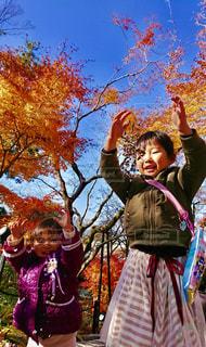 空,秋,紅葉,木,晴れ,枯れ木,女の子,笑顔,芸術,Sky,グラデーション,秋空,秋色