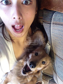 犬を持つ女性の写真・画像素材[1454792]