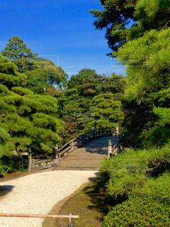 京都御所、御池庭の写真・画像素材[1683139]