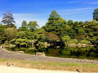 京都御所、御池庭の写真・画像素材[1683150]