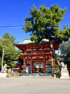 今宮神社の写真・画像素材[1683798]