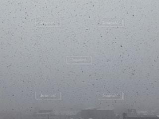 降雪の写真・画像素材[1735799]