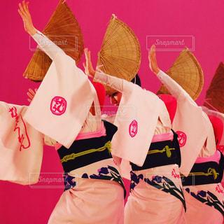 夏,ピンク,夏休み,徳島県,ピンク色,伝統,pink,阿波おどり