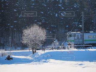 雪に覆われた斜面の写真・画像素材[1737660]