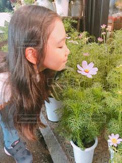 緑,植物,コスモス,子供,女の子,美しい,人物,新緑,人,グリーン,草木