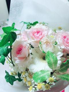 花,ピンク,flower,pink