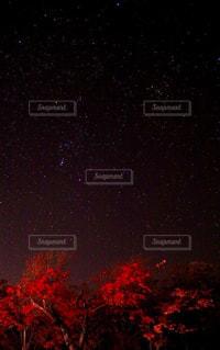 紅葉と星空。の写真・画像素材[1466231]