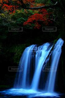 背景の木と滝の写真・画像素材[1466806]