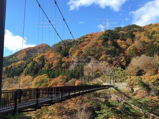 自然,橋,紅葉,栃木県