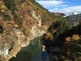 自然,紅葉,鬼怒川,栃木県