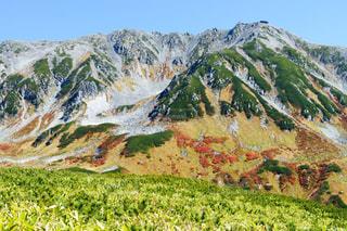 立山の鮮やかな紅葉の写真・画像素材[1605491]