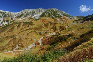立山室堂平の鮮やかな紅葉の写真・画像素材[1608788]
