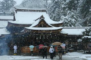 冬,傘,雪,白,景色,樹木,人,旅行,初詣,ホワイト,滋賀県,フォトジェニック,多賀大社,インスタ映え