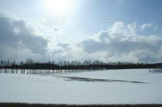 空,雪,白,雲,北海道,景色,美しい,樹木,旅行,ホワイト,網走,フォトジェニック,インスタ映え