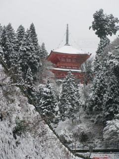雪化粧した延暦寺の写真・画像素材[1660974]