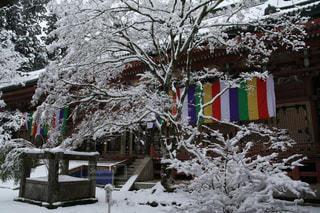 雪化粧した比叡山延暦寺の写真・画像素材[1732311]