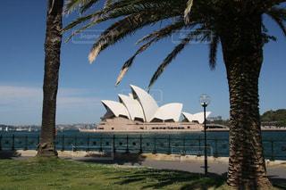 シドニーのユニークなデザインのオペラハウスの写真・画像素材[1842017]