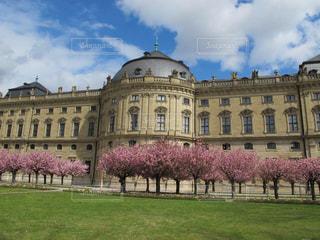 ドイツヴュルツブルク司教館庭園の美しい八重桜の写真・画像素材[1844013]