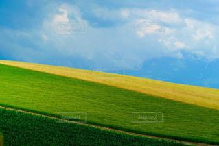 美しい青空と美瑛の丘の風景の写真・画像素材[1866662]