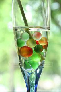 キラキラ輝く綺麗な新緑とグラスの写真・画像素材[1875057]