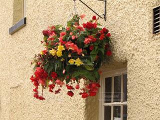 イギリスのシンプルでおしゃれな外壁と花のハンギングの写真・画像素材[2230111]