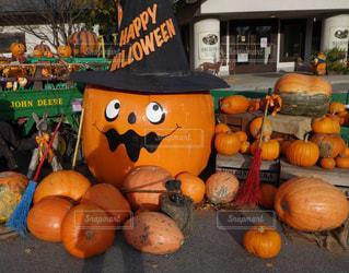 かぼちゃゴロゴロほうきも可愛いハロウィンの写真・画像素材[2499276]