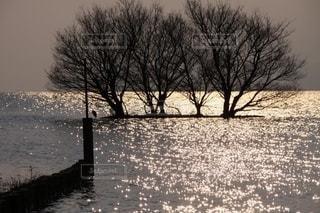 キラキラ神秘的な冬の湖面の写真・画像素材[2626020]