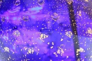 太陽の光を浴びた神秘的な花瓶の写真・画像素材[2626129]