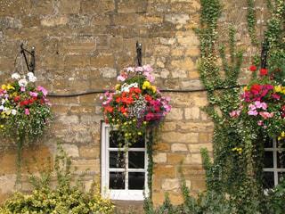レンガ造りに可愛い花のハンギングの写真・画像素材[3070649]