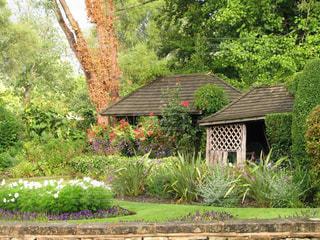 コッツォルズの緑豊かなガーデンの写真・画像素材[3070653]