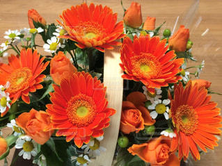 鮮やかなオレンジの花束の写真・画像素材[3090240]