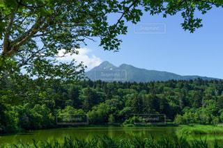 利尻富士と姫沼の風景の写真・画像素材[3143194]