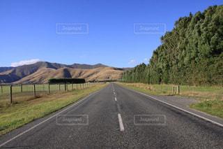 大自然を一直線に走るの写真・画像素材[3245586]