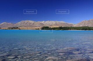 神秘的なミルキーブルーのテカポ湖の写真・画像素材[3245727]
