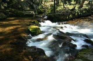 自然の美しい川の流れの写真・画像素材[3343581]