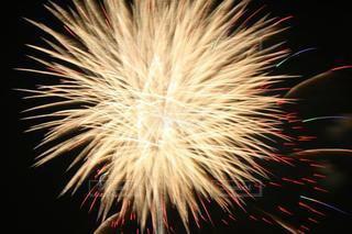 夜空に輝く想い出の花火の写真・画像素材[3615146]