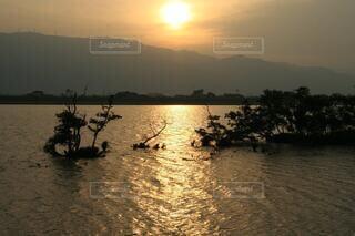 キラキラした夕陽の波が美しくの写真・画像素材[4136374]