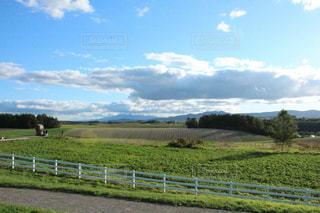 自然,空,屋外,緑,白,雲,北海道,旅行,秋空,9月,日中