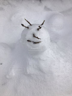 雪の…だるまの写真・画像素材[1732169]