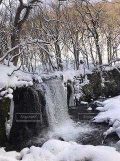 冬の特別なひとときの写真・画像素材[1779696]