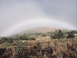 自然,風景,屋外,虹,草,旅行,ハワイ,ハワイ島