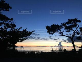 自然,風景,空,屋外,太陽,夕暮れ,沖縄,光,樹木,離島,草木