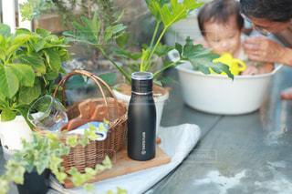 植物,黒,ボトル,幼児,水遊び,男の子,水分補給,熱中症対策,タケヤフラスク,タケヤフラスクトラベラー