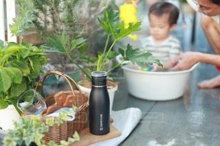 植物,黒,ボトル,ティータイム,幼児,水遊び,男の子,水分補給,熱中症対策,タケヤフラスク,タケヤフラスクトラベラー