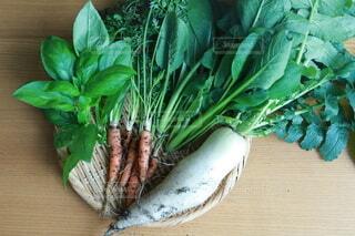 食べ物,野菜,食品,家庭菜園,食材,フレッシュ,ベジタブル,プランター菜園