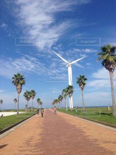 自然,空,青空,風車,景色,青い,秋空
