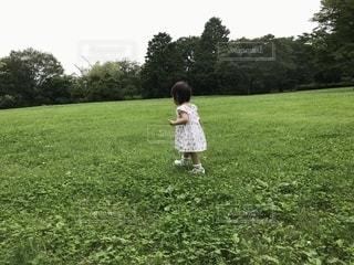 自然,空,屋外,緑,ワンピース,白,樹木,お散歩,1歳,娘,日中