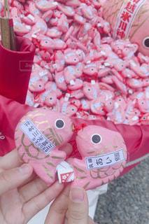 ピンク,おみくじ,鯛,氷川神社,つり,あいたい
