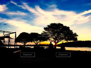 夕日,屋外,太陽,夕暮れ,飛行機,影,オーストラリア,シドニー,秋空