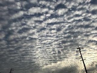 自然,空,秋,雲,うろこ雲,秋空